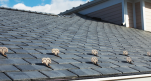Dority Roofing and Solar